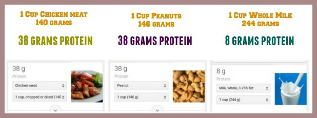 karnataka-chutney-podi-protein-pic