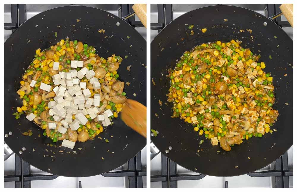 Carrot-Cabbage-Rice-and-Tofu-with-Veggies-15