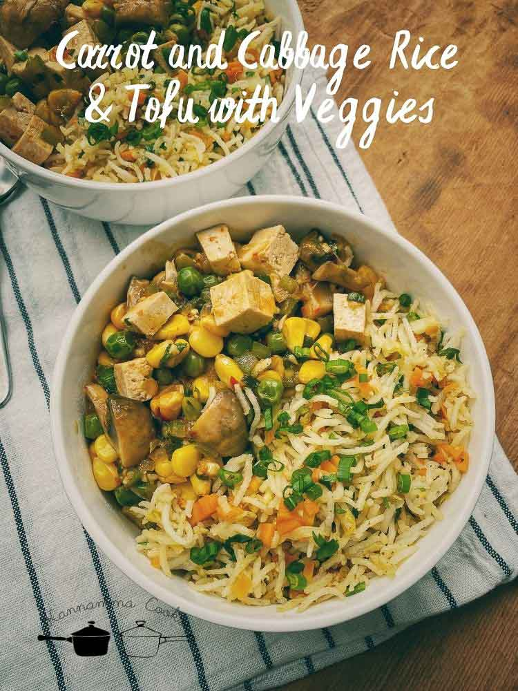 Carrot and Cabbage Rice & Tofu with Veggies