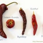 Popular Indian Chillies