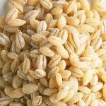 barley-pic-1