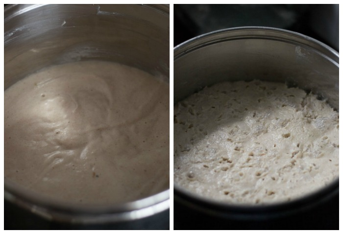 brown-rice-idli-ferment