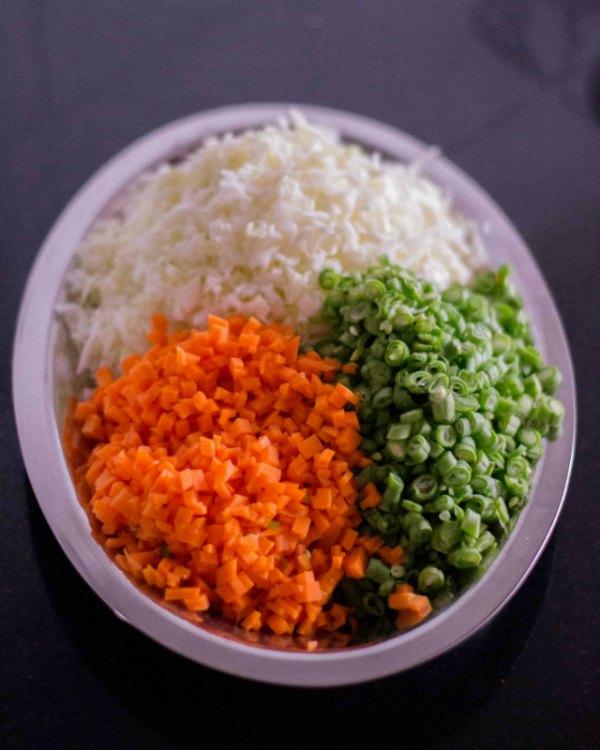 burnt-garlic-vegetable-fried-rice-veg