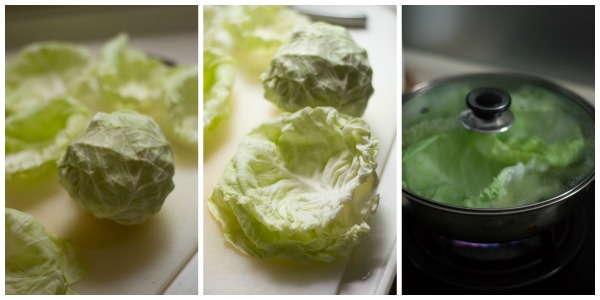 cabbage-rolls-cabbage