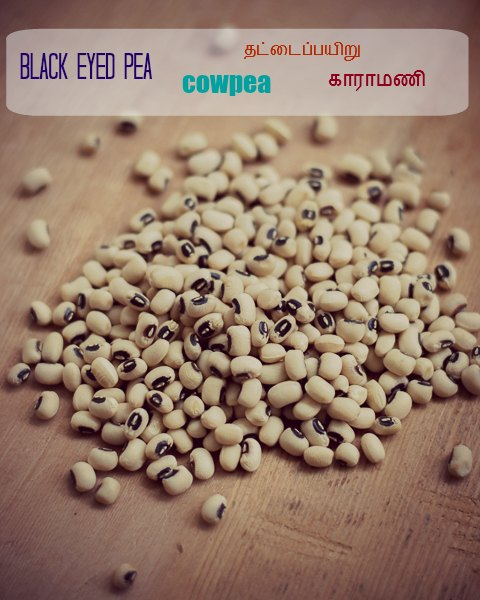 karamani-black-eyed-bean-puli-kuzhambu-curry-recipe-grain