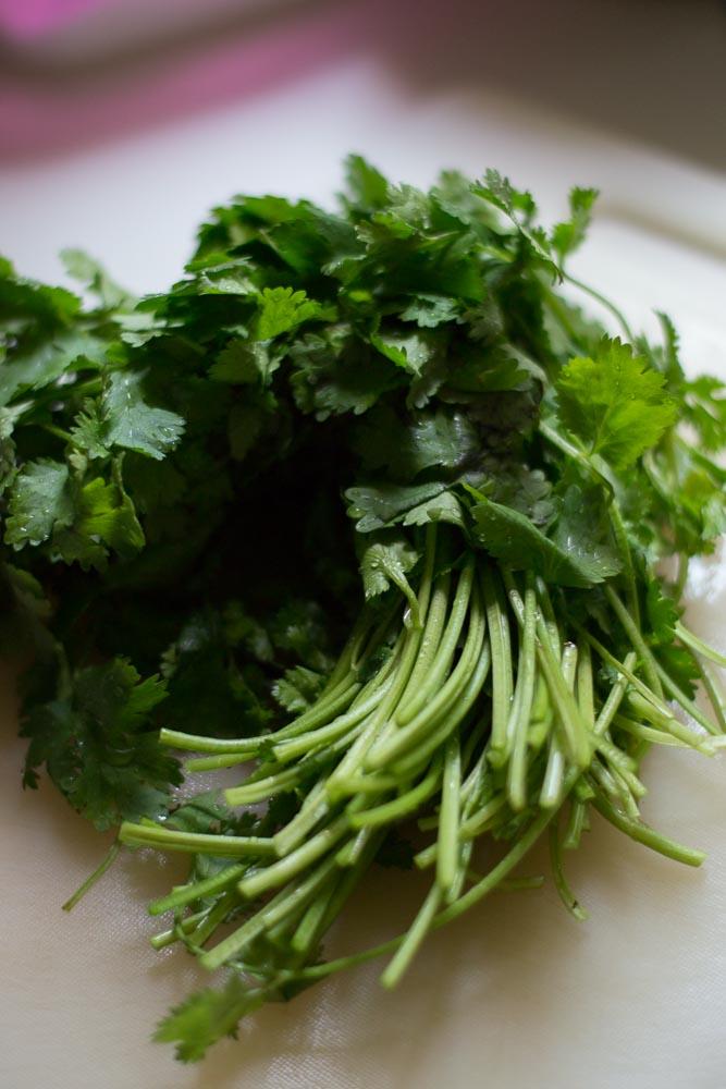 kothamalli-sadam-coriander-rice-kothamalli-rice-kothamalli